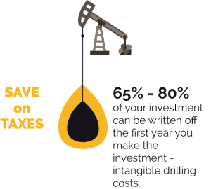 pump jack on taxes - working interest vs mineral interest